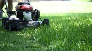 5 Tips For Preparing Your Lawn for Winter